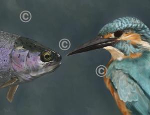 The Fisherman by Marisa Azad